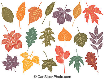 ector illustration set of 19 autumn