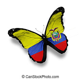 Ecuador flag butterfly, isolated on white