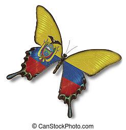 ecuador läßt, auf, papillon