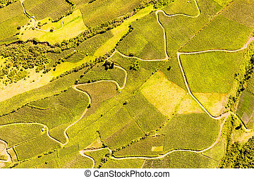 Ecuadorian Farmland Aerial Shot