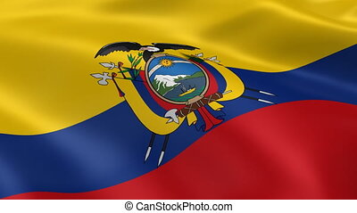 Ecuadorian flag in the wind