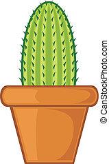 edény, kaktusz