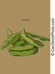 edamame/soy, -, kéz, növényi, húzott, beans.