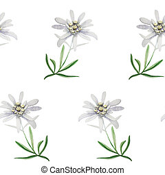 edelweiss flower symbol alpinism alps germany logo set - ...