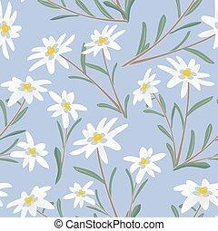 edelweiss seamless pattern
