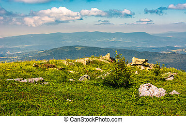 edge of the mountain hill with boulders. lovely summertime...