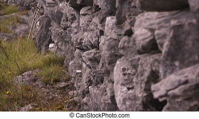 Edgy rocks of Ireland - A moving medium shot of edgy rocks...