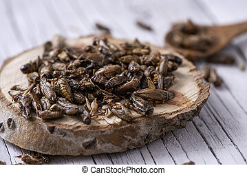 edible fried crickets - closeup of a pile of fried crickets...