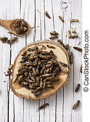 edible fried crickets - high angle view of a pile of fried...