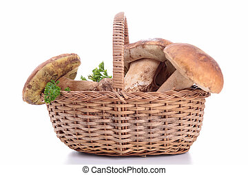 edible mushroom on basket