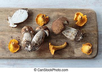 Edible mushrooms - Mix of edible mushrooms on a chopping ...