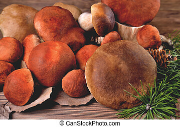 Edible mushrooms, porcini and boletus on a natural wooden background close-up