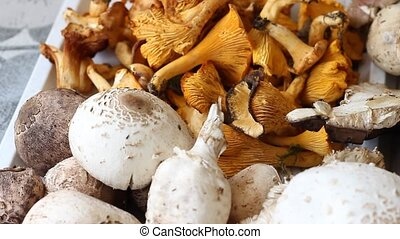 Edible Mushrooms - Pan shot with different sortiment of...