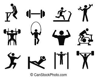 edificio cuerpo, gimnasio, iconos