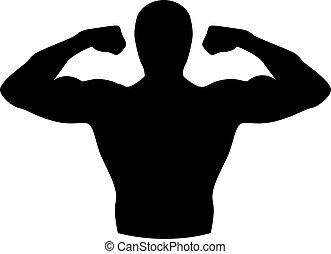 edificio cuerpo, músculos