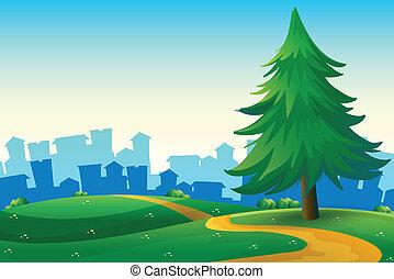 edificios, colinas, árbol grande, pino, alto