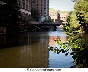 edificios, río, viejo, san antonio