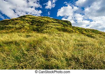 edimbourg, vue, collines vertes, été