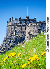Edinburgh Castle with spring meadow in Scotland