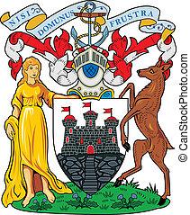 Edinburgh city coa - Various vector flags, state symbols,...