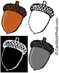 Acorn - Editable vector illustrations in variations. Acorn