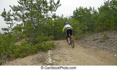 EDITORIAL. Three Mountain Bikers Going Fast Downhill In...