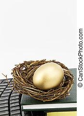 educação, é, a, modernos, ovo ninho