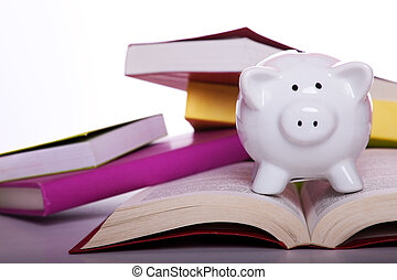 educación, coste