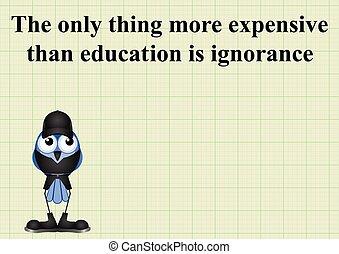 educación, costoso