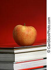 educación, plano de fondo
