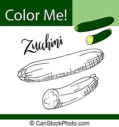 Education coloring page with vegetable. Hand drawn vector illustration of zucchini.