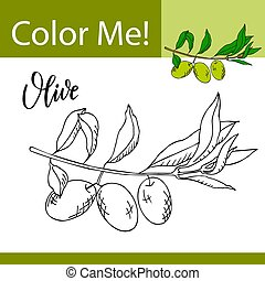Education coloring page with vegetable. Hand drawn vector illustration of olive.