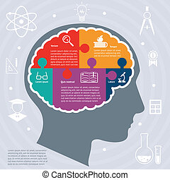Education infographics concept - Education infographics with...