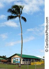 Education Northern tip of Big Island