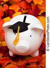 Education Savings - Piggy bank with a graduation cap � the...