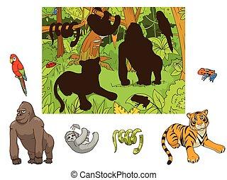 educativo, animales, juego, vector, selva, caricatura