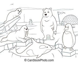 educativo, colorido, animales, ártico, juego, libro