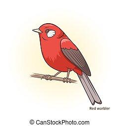 educativo, curruca, juego, vector, pájaro, rojo