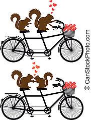 eekhoorns, op, fiets, vector