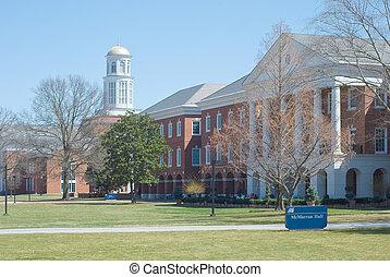 een, amerikaan, universiteit