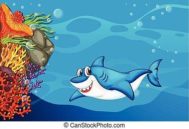een, haai, onder, de, zee