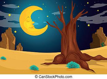 een, maanlicht, avond