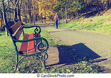 een, man te lopen, in, de, bos, park