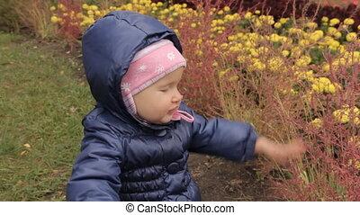 een, meisje, aandoenlijk, rood, struiken, op, een, flower-bed, in het park, tegen, de, gele, flower.