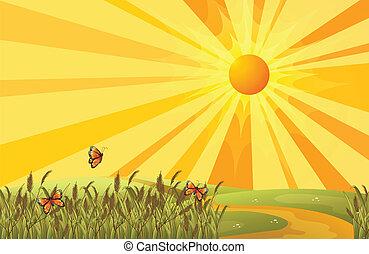 een, ondergaande zon , boven, de, heuvels