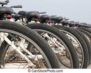 een, roeien, van, bicycles