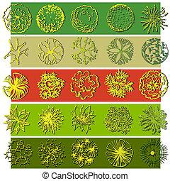 een, set, van, boomkruin, symbolen, voor, archi