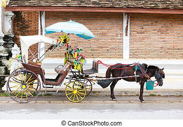 een, wagen, met, zwart paard
