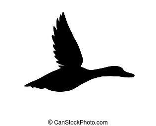 eend, black , silhouette, vector, vliegen