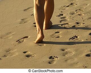 eenpersoons, wandelende